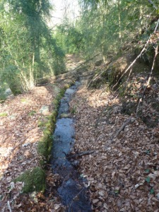 Canal en amont cascade Saint Cassin