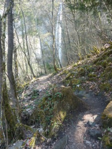 Sentier cascade Saint Cassin