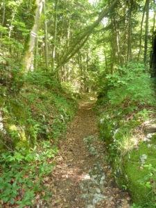 10 A proximité des Grottes Francois 1er b