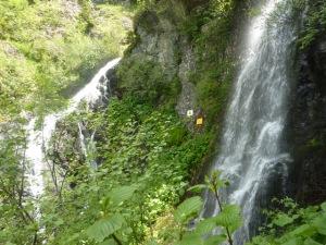 17 cascade B b