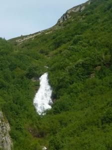 24 cascade D b