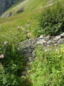 404  Ruisseau sous le Mont Pourri b