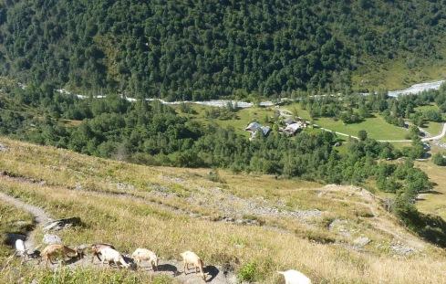 634 depart au dessus du Laisonnay d en haut b
